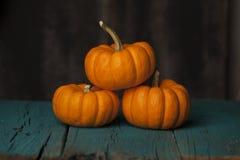 Three mini orange pumpkins on turquoise background. Stock Photo