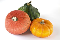 Three mini pumpkins. A red, a yellow and a green mini pumpkin Royalty Free Stock Photography