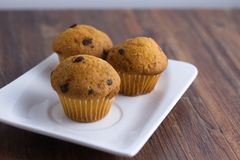 Three miniature muffins on rectangular plate Stock Photos