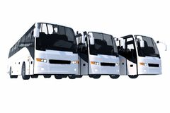 Three Modern Buses Isolated Stock Image