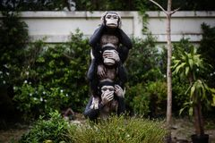 Three monkey hand symbols in garden Royalty Free Stock Photos