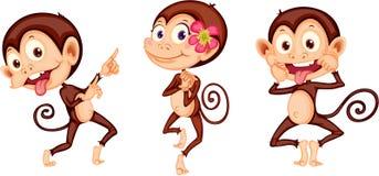 Three Monkeys. Illustration of three monkeys on white background Stock Photo