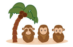 Three monkeys Royalty Free Stock Photos