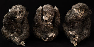 Three monkeys. The philosophy of the three wise monkeys Royalty Free Stock Images
