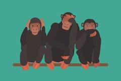 Three monkeys Royalty Free Stock Photography