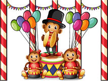 Three monkeys at the carnival Royalty Free Stock Photo