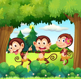 Three monkeys dancing at the forest vector illustration