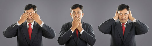 Three monkeys with Expression Royalty Free Stock Image