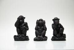 Three monkeys Stock Image