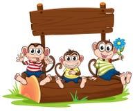 Three monkeys under the empty signboard Royalty Free Stock Photo