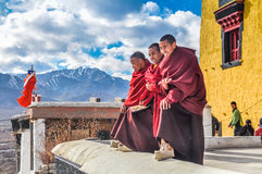 Three monks in Ladakh. Thiksey, Ladakh - circa November 2011: Three miling monks in red sit and watch ceremony at Thiksey festival, Ladakh. Documentary editorial Stock Photo