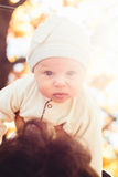 Three month baby in his father's hands Royalty Free Stock Photo