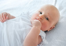 Three months baby Royalty Free Stock Image