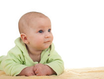 Three months old baby boy Royalty Free Stock Photo