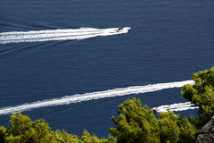 Three motorboats against a blue sea and trees. Three motorboats against a wonderful blue sea, crossing, the green tops of some pine trees in the foreground stock image