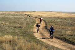 Three mountain bikers. On rural road Royalty Free Stock Photos