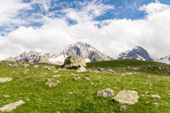 Three mountain peaks. Flourish and green meadow with the background of three mountains peaks in densed clouds royalty free stock photos