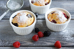 Three muffin with summer berries Stock Photography