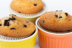 Three muffins in the beautiful cups. Three muffins in beautiful cups of various colors Royalty Free Stock Photo