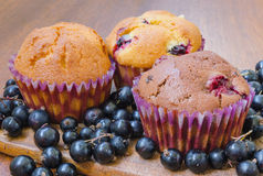 Three muffins with blackcurrant. Composition with two lemon cherry muffins and one chocolate muffin surrounded by blackcurrant Stock Photos