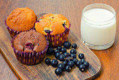 Three muffins with blackcurrant and a glass of milk. A composition with three muffins, blackcurrant berries and a small glass of milk Royalty Free Stock Photo