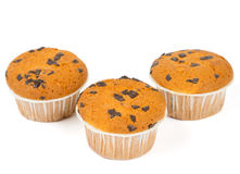 Three muffins with chocolate chips Stock Photos