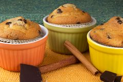 Three muffins with cinnamon sticks and chocolate. In the beautiful cups Stock Image