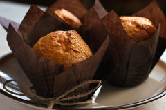 Three muffins on the plate Royalty Free Stock Photo