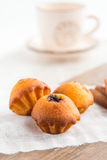 Three muffins. Swith poppy stuffing Stock Images