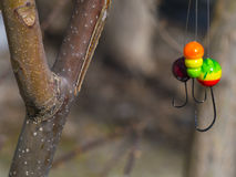 Three multi-colored jig for fishing and branch royalty free stock image