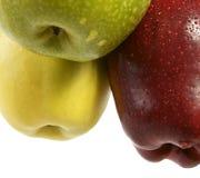 Three Multi-coloured Apples Royalty Free Stock Image