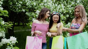 Three multi ethnic girl friends consider purchases packages after shopping. stock footage