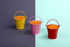Three multicolored buckets with orange lentil beans. Stock Images