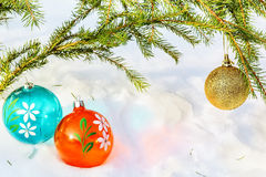 Three multicolored Christmas balls and fir branch Stock Image