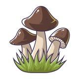 Three mushrooms in the grass vector illustration