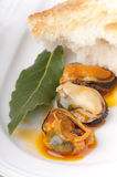 Three mussels with bread and a bay leaf. Royalty Free Stock Images