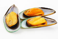 Three mussels Royalty Free Stock Photo