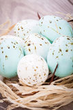 Three natural blue Easter eggs in a basket Stock Photography
