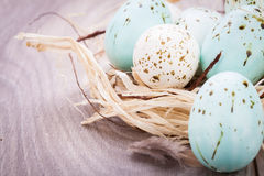 Three natural blue Easter eggs in a basket Royalty Free Stock Photography