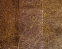 Three natural leather textures Stock Images