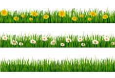 Three nature backgrounds of green grass Royalty Free Stock Photos