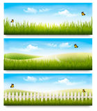 Three nature summer meadow landscape banners with grass Royalty Free Stock Photography
