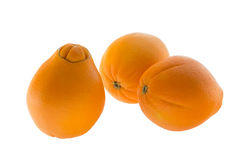 Three navel oranges Stock Images