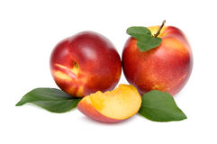 Three nectarines Royalty Free Stock Image