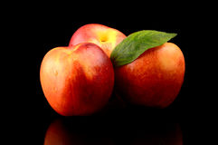 Three nectarines with leaf isolated on black Royalty Free Stock Images