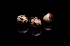 Three nest pasta with quail eggs on black background Stock Photography