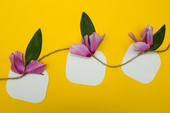 Three notes on a string with flowers, space for text stock image