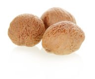 Three nutmeg Stock Image
