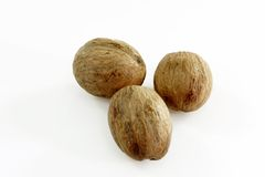 Three Nutmegs. Close up of three whole nutmegs Stock Photography
