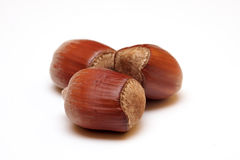 Three Nuts Royalty Free Stock Photo